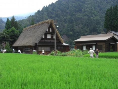 Gokayama traditional houses
