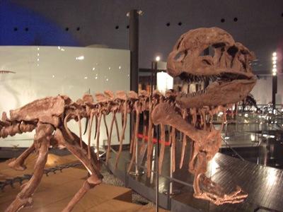 Dilophosaurus চলুন একবার ঘুরে আসি ডাইনোসর এর যুগ থেকে