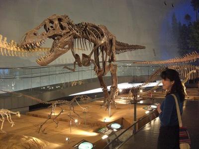 Hitomi Rex চলুন একবার ঘুরে আসি ডাইনোসর এর যুগ থেকে